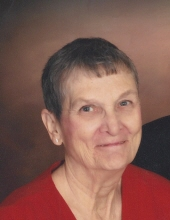 Nancy Ann Van Zile