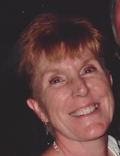 Suzanne Kay Hollenbeck