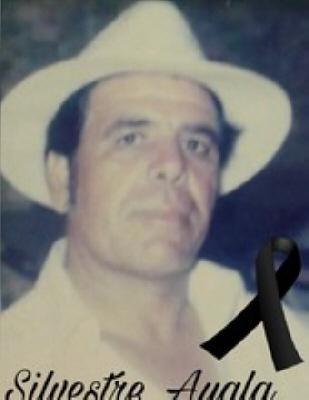 Silvestre  Ayala
