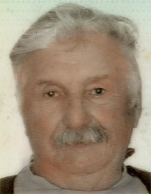 Allan George Domenco