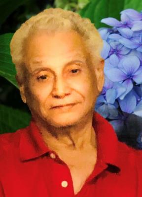 Julio Cesar Merlo