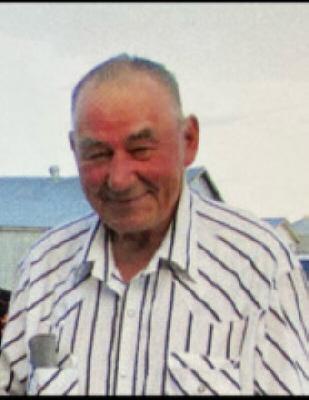 Nelson Louis Kallichuk