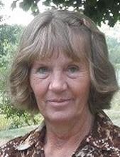 Elayne M. Niquette