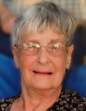 Lois N. Benzinger