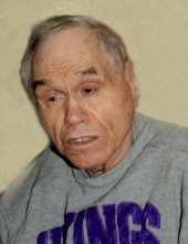 Wayne L.  Berosik
