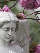 Ivy Patrick Memphis, Tennessee Obituary
