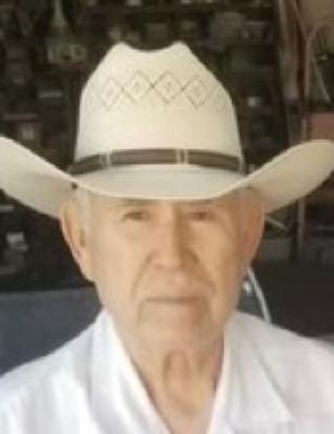 Santos D. Tamez Raymondville, Texas Obituary